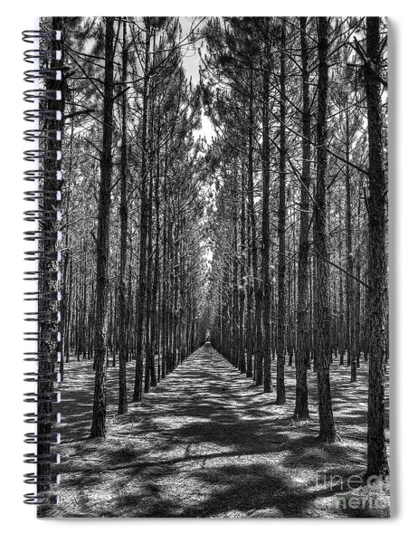 Rows Of Pines Vertical Spiral Notebook