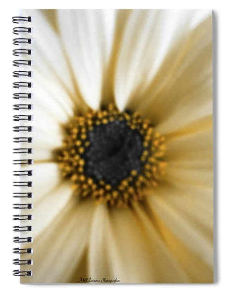 Royal Daisy Spiral Notebook