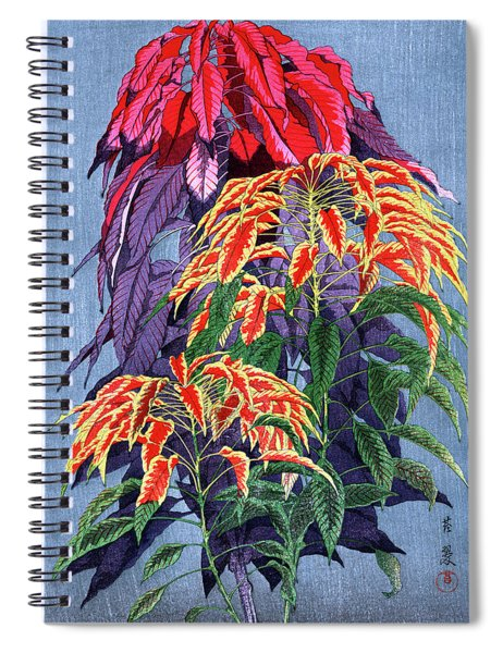 Roys Collection 6 Spiral Notebook
