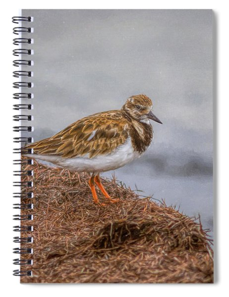 Ruddy Turnstone By The Waters Edge Spiral Notebook