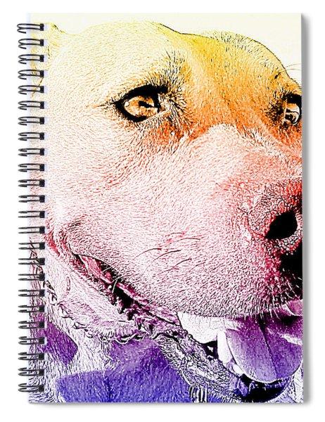 Rudy Spiral Notebook