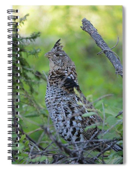 Ruffed Grouse Spiral Notebook