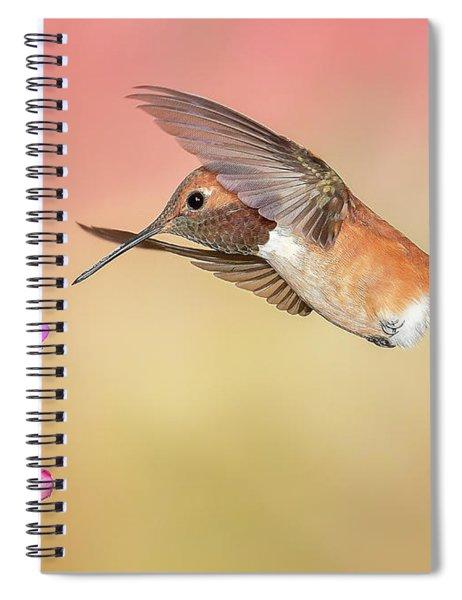 Rufous Hummingbird With Penstemon Spiral Notebook