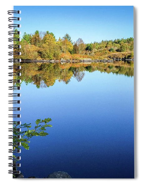 Ruminating The Fall Spiral Notebook