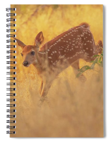 Running In Sunlight Spiral Notebook by John De Bord