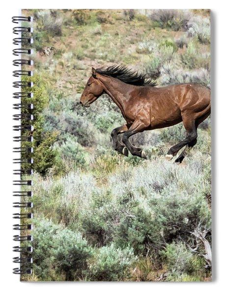 Running Through Sage Spiral Notebook