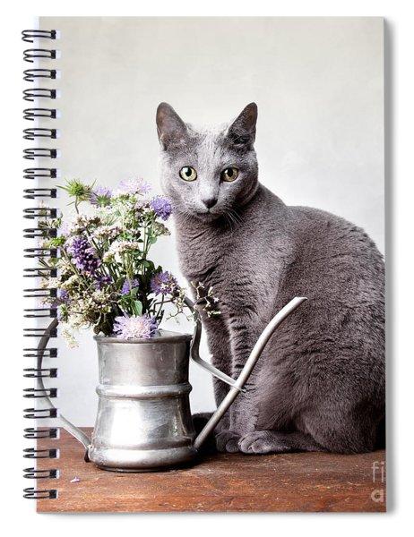 Russian Blue 02 Spiral Notebook