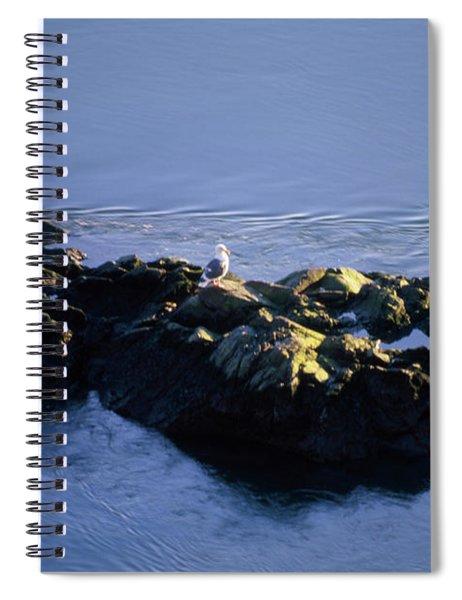 Russian River - Jenner California Spiral Notebook