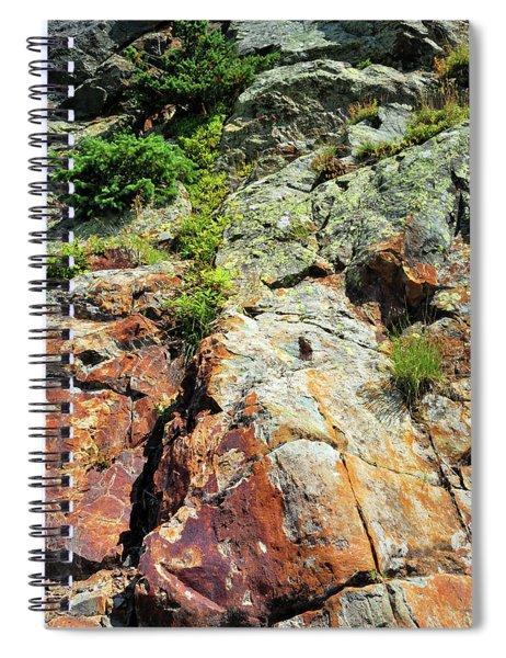 Rusty Rock Face Spiral Notebook