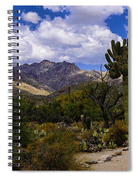 Sabino Canyon No4 Spiral Notebook