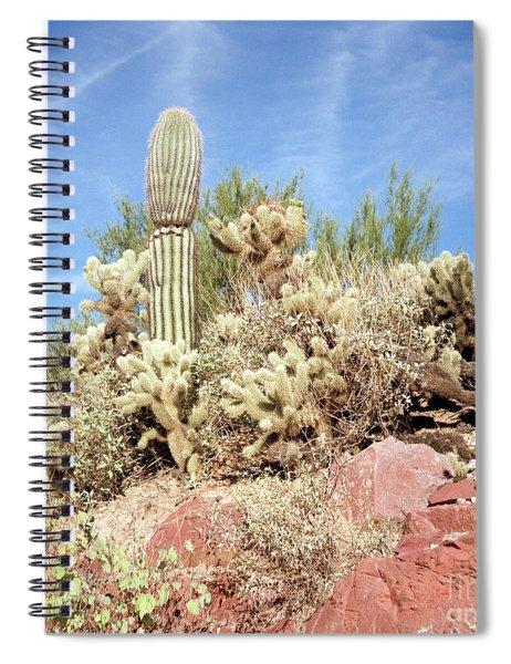 Saguaro Cactus In The Sanoran Desert Spiral Notebook
