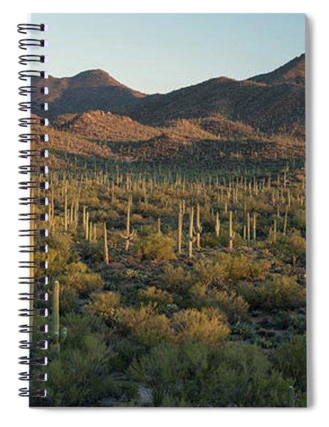 Saguaro National Park At Signal Hill Panoramic Spiral Notebook