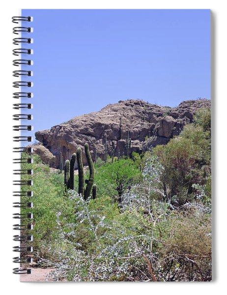 Saguaros Spiral Notebook