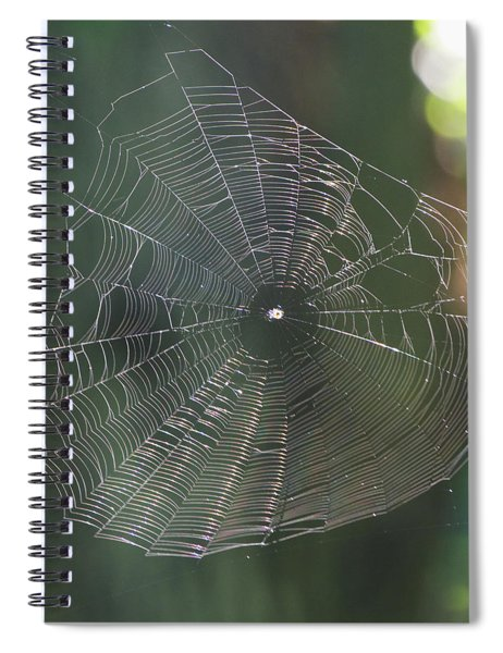 Said The Spider.... Spiral Notebook