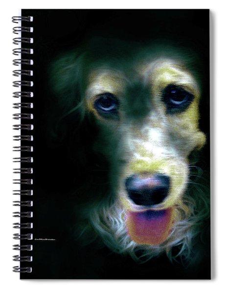 Saint Shaggy Art 14 Spiral Notebook