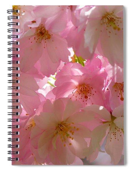 Sakura - Japanese Cherry Blossom Spiral Notebook