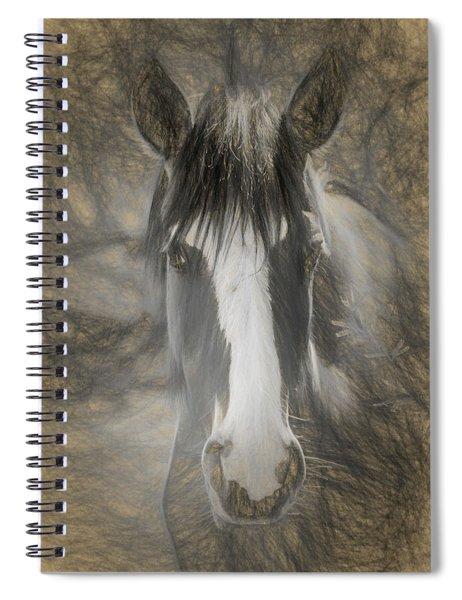 Salt River Stallion Spiral Notebook
