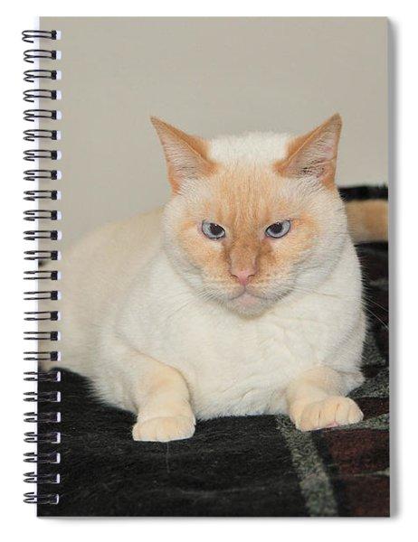 Sam I Am Spiral Notebook