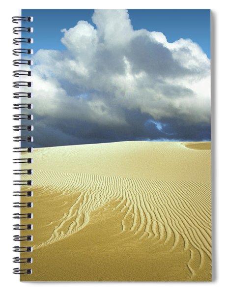 Sandanistas Spiral Notebook