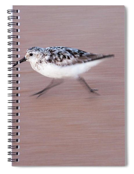 Sanderling On The Run Spiral Notebook
