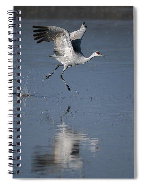 Sandhill Crane Running On Water Spiral Notebook