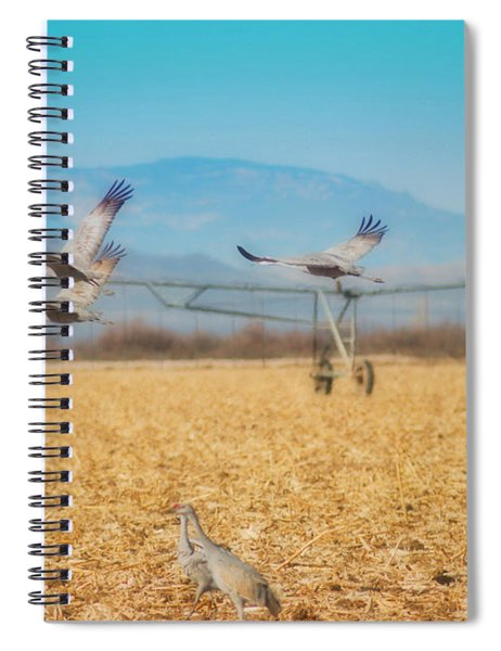 Sandhill Cranes In Flight Spiral Notebook