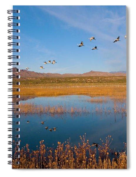 Sandhill Cranes In Flight Spiral Notebook