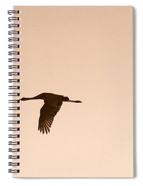 Sandhills In Flight In Sepia Spiral Notebook