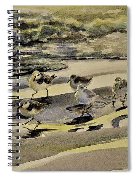 Sandpiper Morning Spiral Notebook
