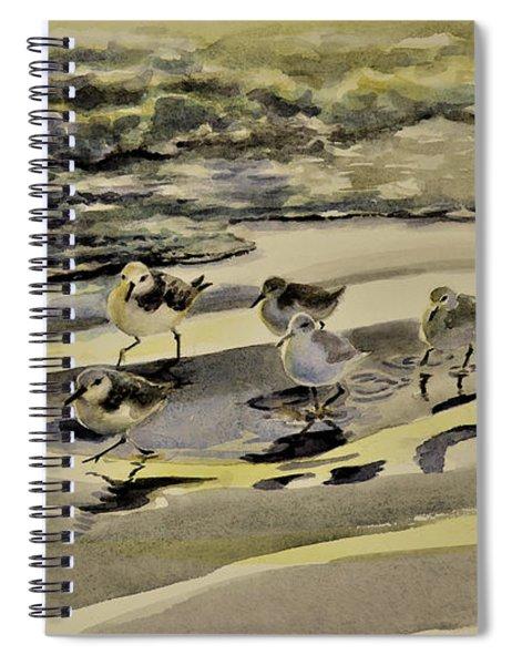 Sandpiper Morning Spiral Notebook