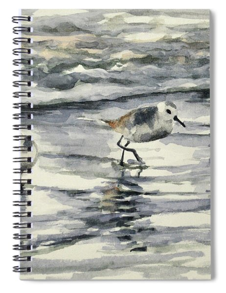 Sandpipers 3  12-11-17 Spiral Notebook