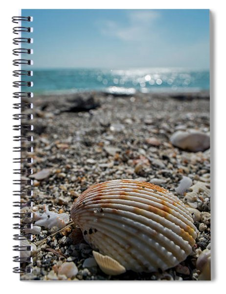 Sanibel Island Sea Shell Fort Myers Florida Spiral Notebook