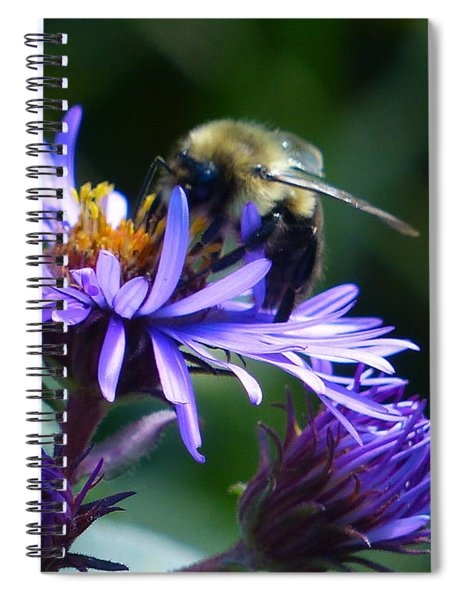 Save The Bees Spiral Notebook