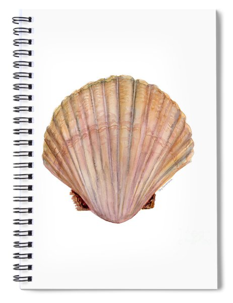Scallop Shell Spiral Notebook