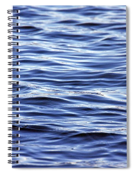 Scanning For Dolphins Spiral Notebook
