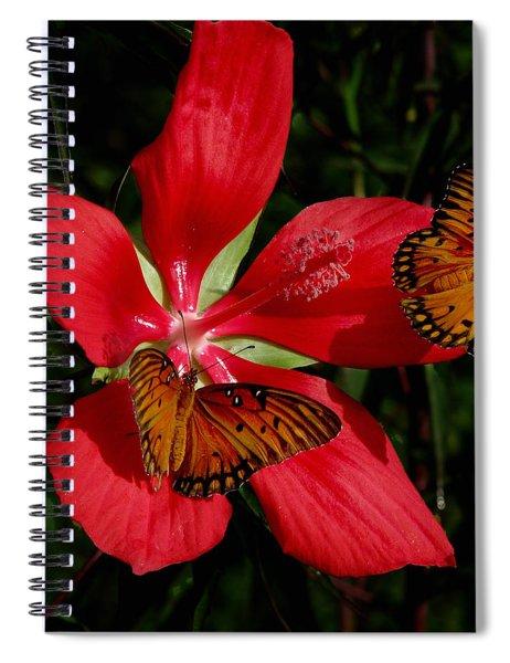 Scarlet Beauty Spiral Notebook