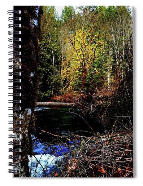 Scoggins Creek 3 Spiral Notebook
