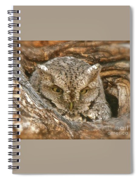 Screech Owl On Spring Creek Spiral Notebook