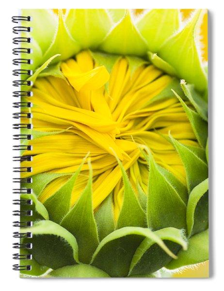 Scrunched Spiral Notebook
