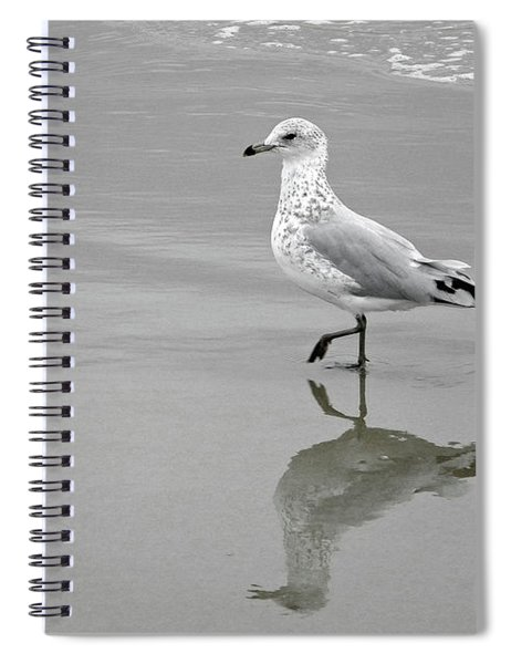 Sea Gull Walking In Surf Spiral Notebook