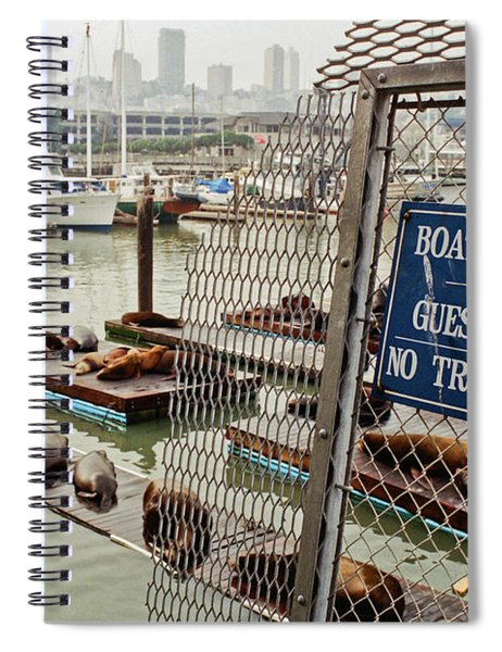 Sea Lions Take Over, San Francisco Spiral Notebook