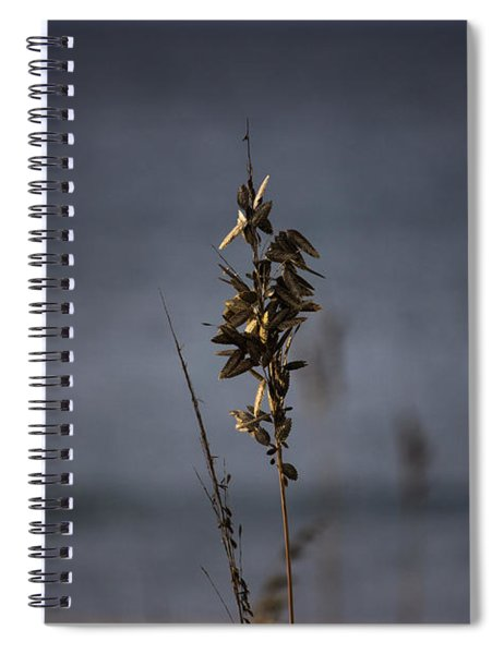 Sea Oat Spiral Notebook