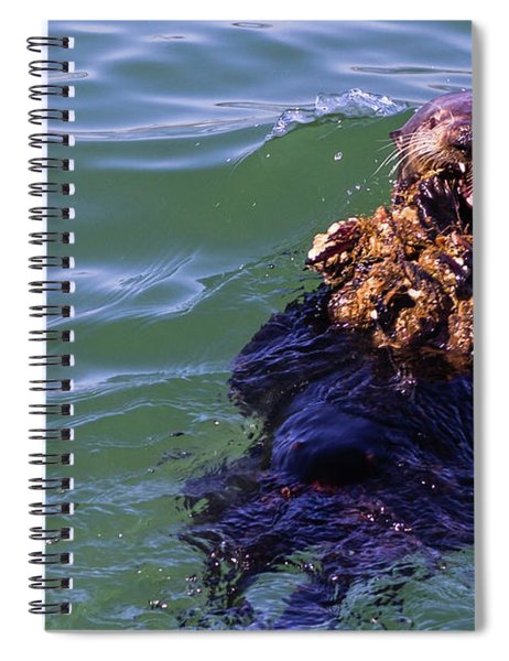 Sea Otter With Lunch Spiral Notebook