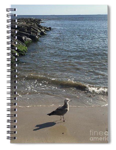 Sea Shadow Spiral Notebook