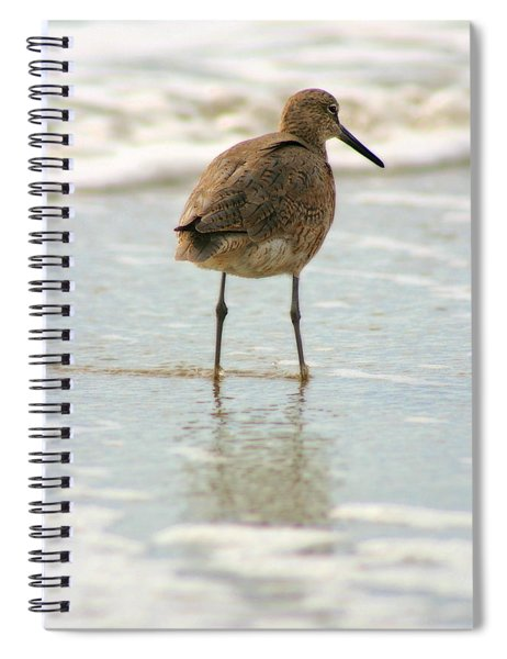 Sea Shore Stroller Spiral Notebook