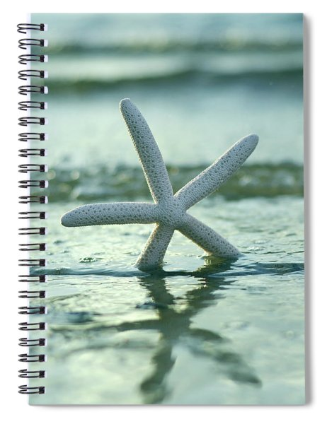 Sea Star Vert Spiral Notebook