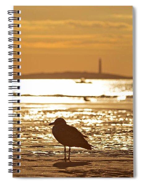 Seagull Admiring Thacher Island Gloucester Ma Good Harbor Beach Spiral Notebook