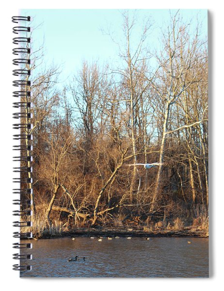 Seagull Flying Spiral Notebook
