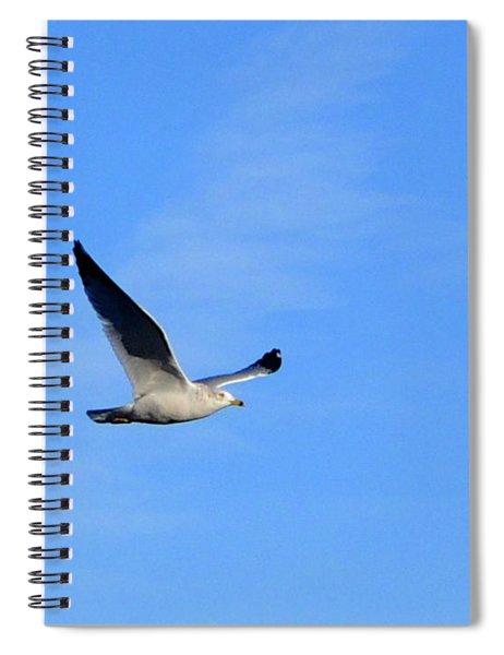 Seagull In Flight Spiral Notebook