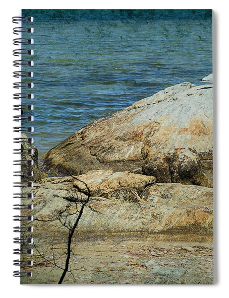 Seagull On A Rock Spiral Notebook
